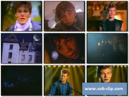 A-HA - Cry Wolf (1986) (VOB)