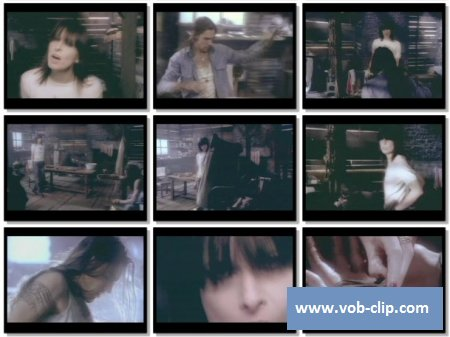 Pretenders - I'll Stand By You (1994) (VOB)