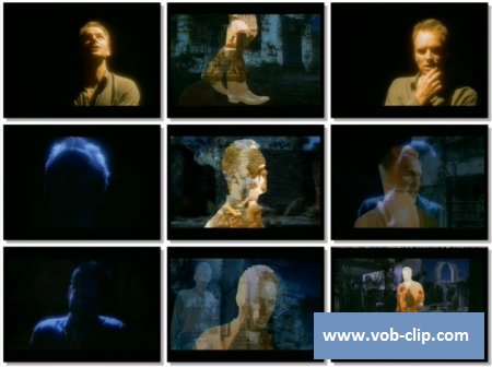 Sting - Fields Of Gold (1993) (VOB)