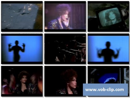 Whitney Houston - My Name Is Not Susan (1991) (VOB)