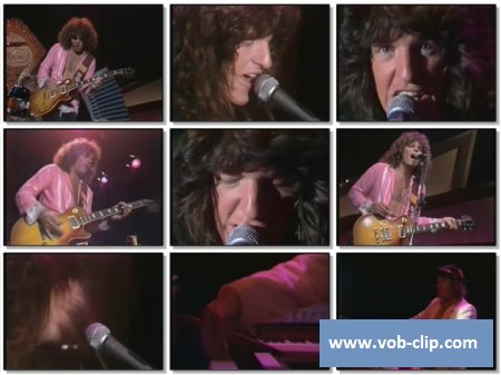 Reo Speedwagon - Roll With The Changes (1978) (VOB)