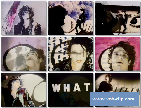INXS - What You Need (1986) (VOB)
