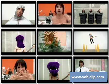 Red Hot Chili Peppers - Can't Stop (2002) (VOB)