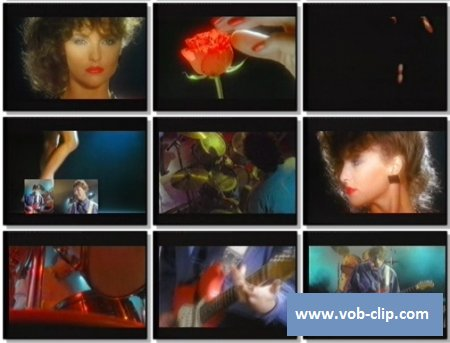 Chris Rea - Stainsby Girl (1987) (VOB)