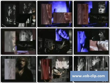 Def Leppard - Have You Ever Needed Someone So Bad (1992) (VOB)