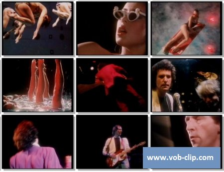 Dire Straits - Twisting By The Pool (1989) (VOB)