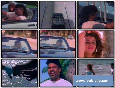 Stevie B. - Spring Love (Come Back To Me) (1988) (VOB)