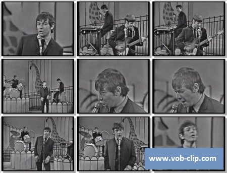 Animals - Bring It On Home To Me (From The Ed Sullivan Show) (1965) (VOB)