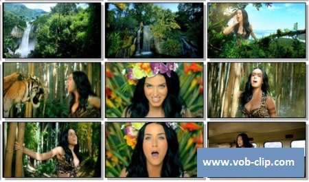 Katy Perry - Roar (2013) (VOB)