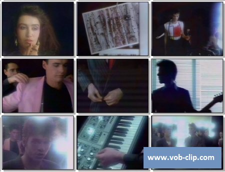 INXS - To Look At You (1982) (VOB)