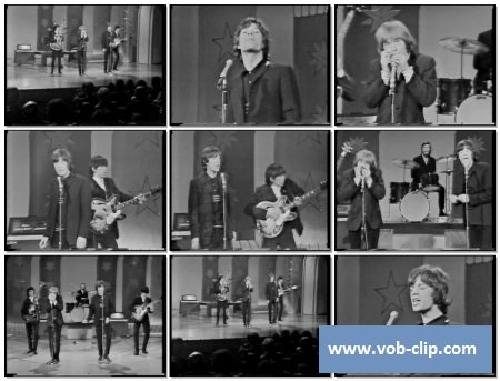 Rolling Stones - I Just Wanna Make Love To You (1964) (VOB)