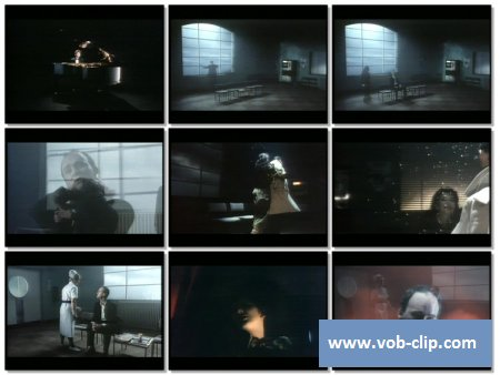 Kate Bush - This Woman's Work (1989) (VOB)