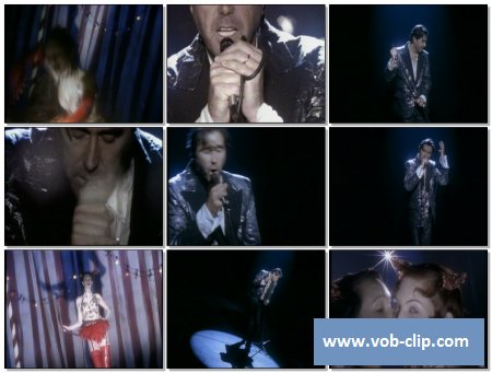 Bryan Ferry - The Girl Of My Best Friend (1993) (VOB)