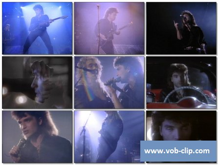 Richard Marx - Too Late To Say Goodbye (1989) (VOB)