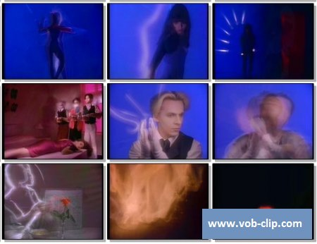 Duran Duran - All She Wants Is (1988) (VOB)