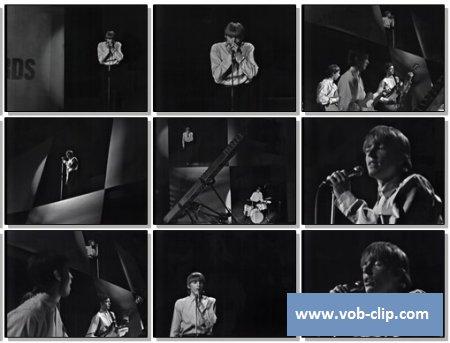 Yardbirds - Louise (1964) (VOB)