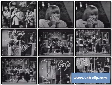 Yardbirds - Im A Man (1965) (VOB)