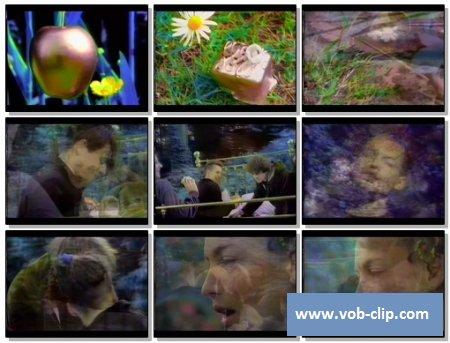 Pale Saints - Kinky Love (1991) (VOB)
