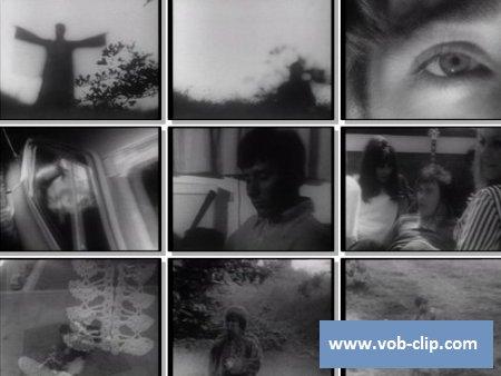 Hollies - Carrie Anne (1967) (VOB)