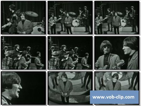 Byrds - Set You Free This Time (1965) (VOB)