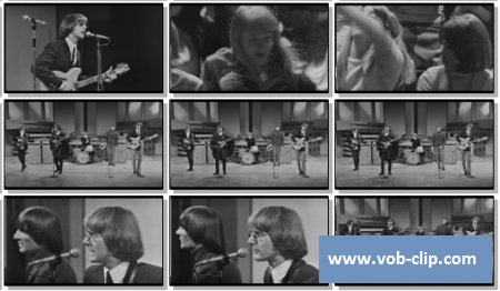 Byrds - Mr. Tambourine Man (The Big T.N.T. Show 1966) (1966) (VOB)