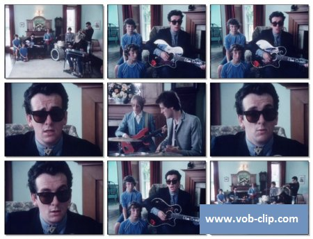 Elvis Costello - Good Year For The Roses (1981) (VOB)