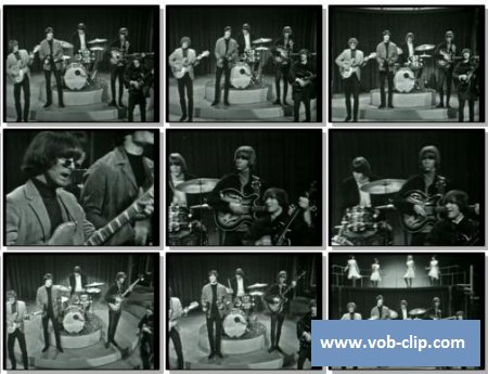 Byrds - It Won't Be Wrong (1965) (VOB)