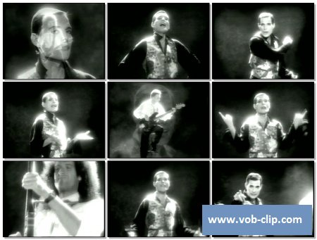 Queen - These Are The Days Of Our Lives (1991) (VOB)