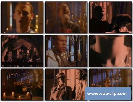 Style Council - Promised Land (1989) (VOB)