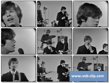 Herman's Hermits – No Milk Today (1967) (VOB)