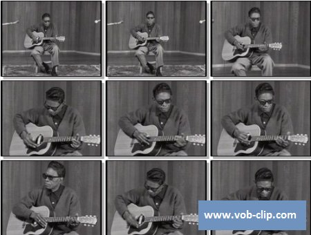 Lightnin Hopkins - Baby Please Dont Go (Live) (1964) (VOB)