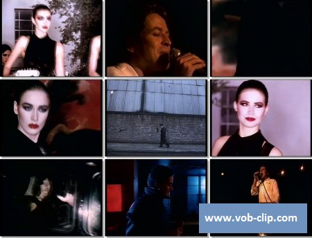 Robert Palmer - Bad Case Of Loving You (Doctor Doctor) (1989) (VOB)
