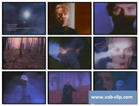 Peter Murphy - Cuts You Up (1989) (VOB)