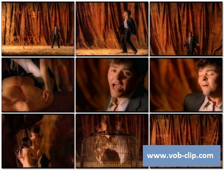 Paul Young - Now I Know What Made Otis Blue (1993) (VOB)