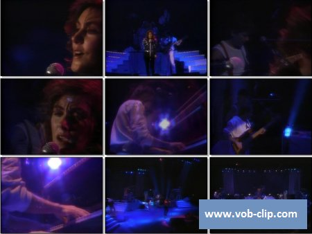 Laura Branigan - I Wish We Could Be Alone (Live) (1984) (VOB)