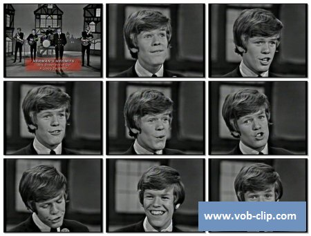 Herman's Hermits - Mrs. Brown, You've Got A Lovely Daughter  (1965) (VOB)