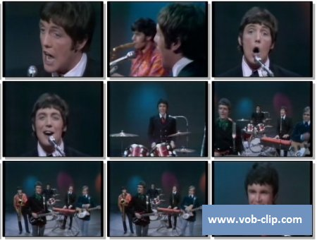 Dave Clark Five - You Got What It Takes (1967) (VOB)