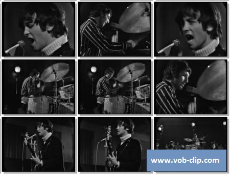 Mindbenders - (Medley) Laud Of Thousand Dances -  In The Midnight Hour -  CC Rider (1965 - 1966) (VOB)